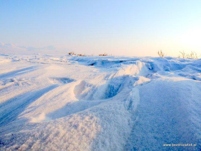 Arktyczny śnieg