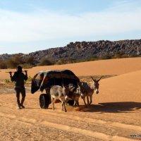 Transport na pustyni