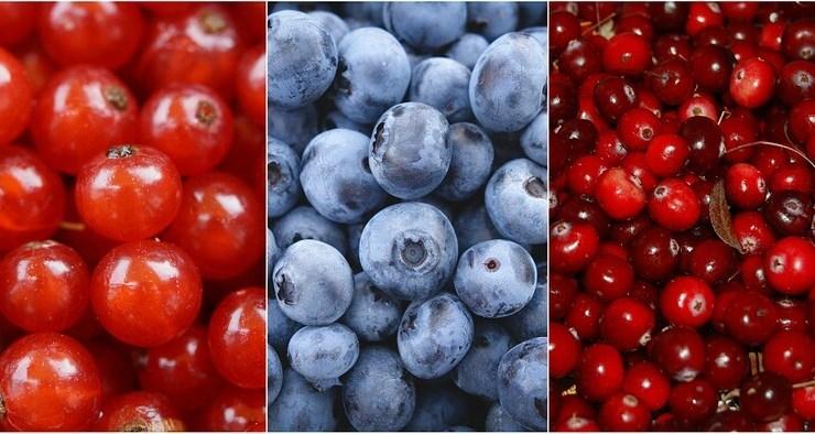 Mrazom sušené ovocie- zdroj vitamínov