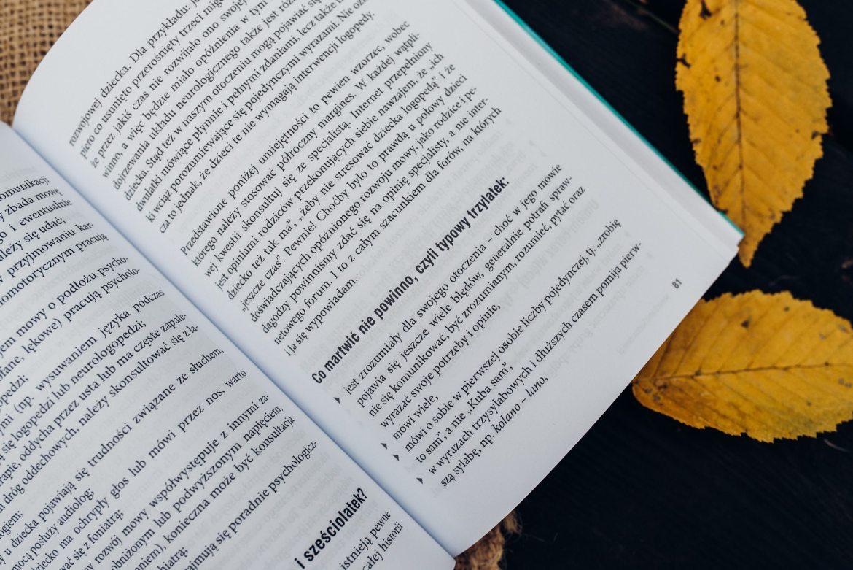 Jak wspierać rozwój przedszkolaka recenzja książki