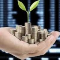 Groeiende investeering