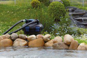 meilleurs filtres pour bassins 2021