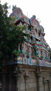 DD 14 - Vimana Gopuram