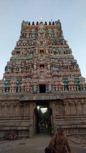 DD 26 - Rajagopuram