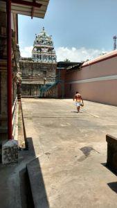 DD36 - Prakaram