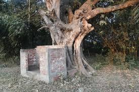 Local onde Jahnu Muni permanecia, em Jahnudvipa