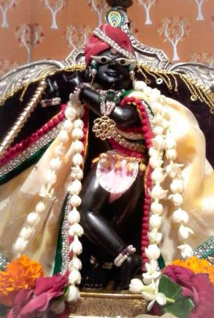 A deidade que se manifestou para Gopal Bhatta, Sri Sri Radha Ramana.