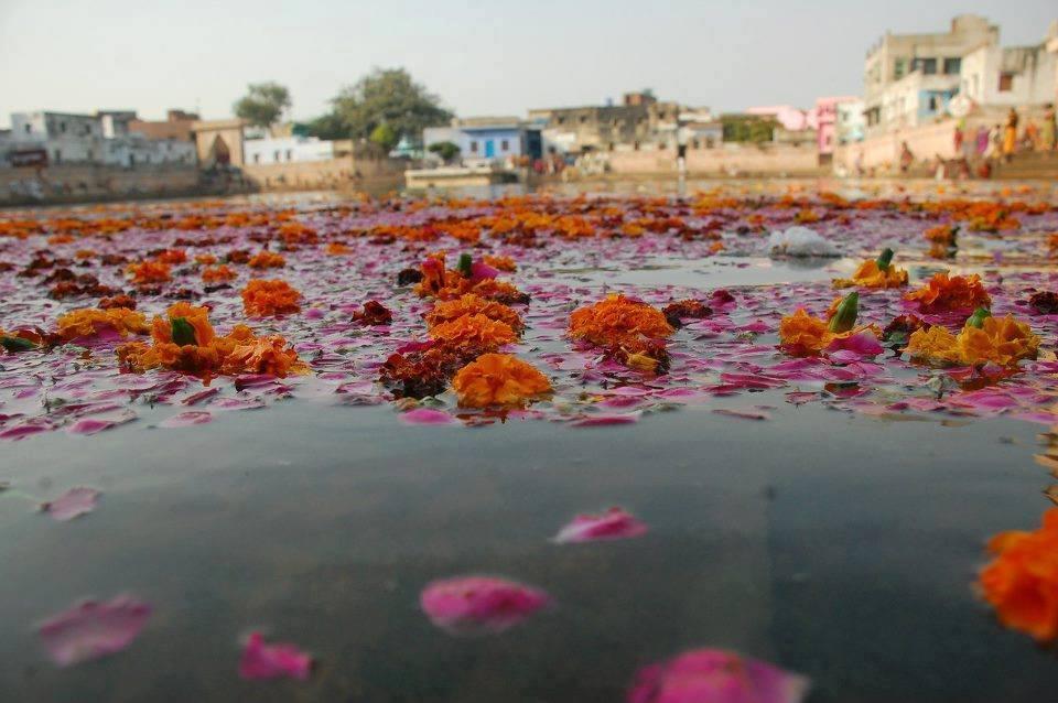 """Krsna se banha no Radha-kunda três vezes. Em profunda meditação, Ele canta: """"Radhe Radhe!"""", e Ela fica muito feliz."""