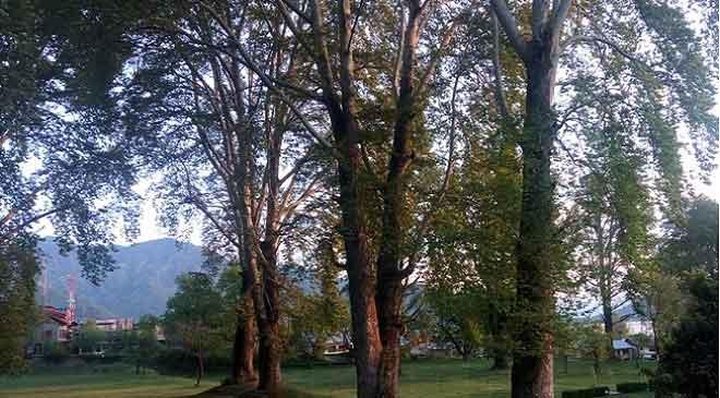 Beautiness of Kashmir