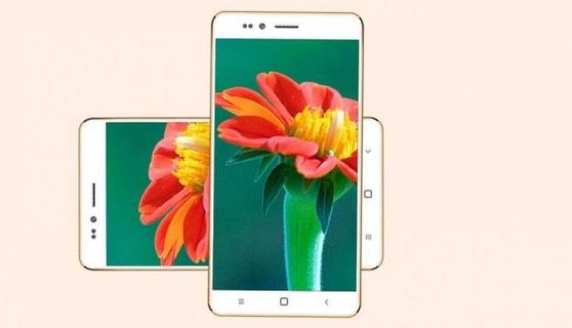 Things to Remember Before You Buy the Freedom 251