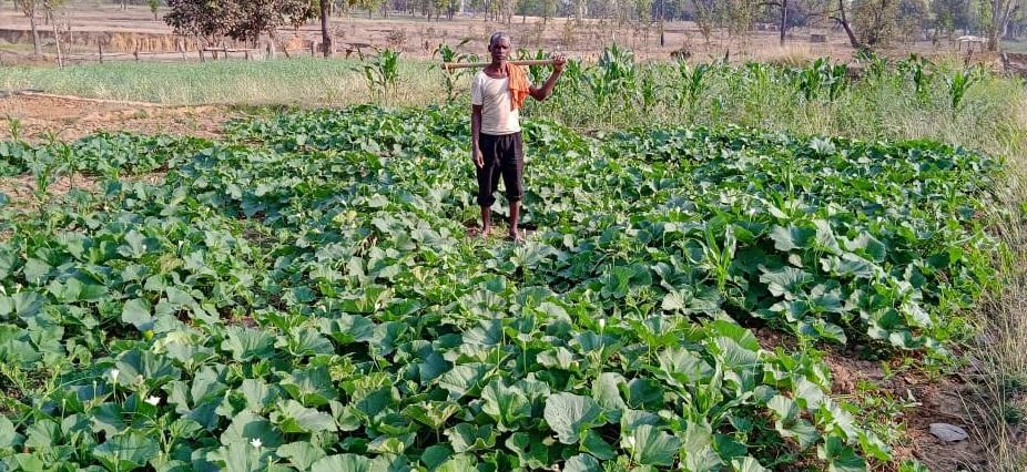 मेहनत करने वालों के लिए रास्ते खुद ही बन जाते हैं...कुछ ऐसी ही है इस किसान की कहानी