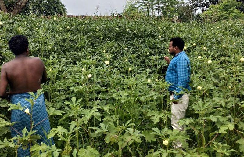 सामान्य किसानों के लिए संजीवनी बना मनरेगा