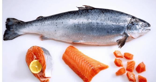 Jenis Ikan yang Baik Untuk Kecerdasan Anak