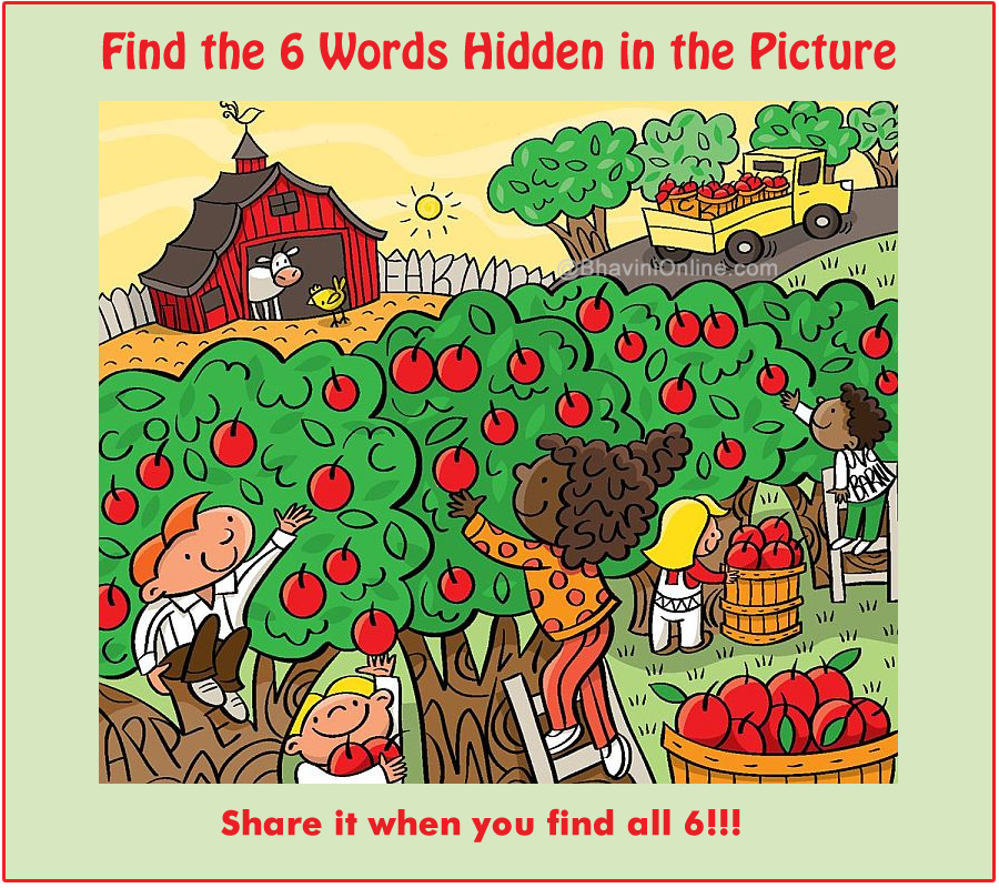 WhatsApp Riddle Find 6 Words Hidden In The Picture 15