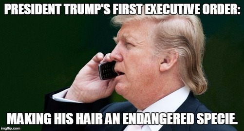 president-donald-trump-trolls-09