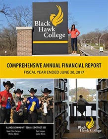 2017 Annual Financial Report Cover