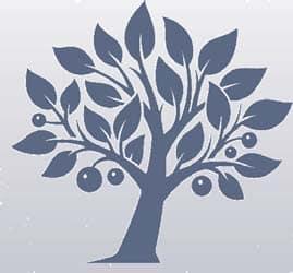 PaCE Lifelong Learner tree