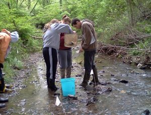 students in stream inspect animals