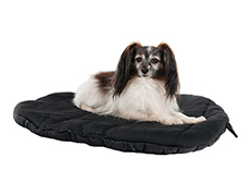Dog Beds and Liners