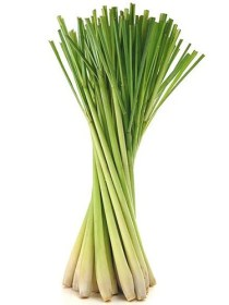 Lemongrass (100g)