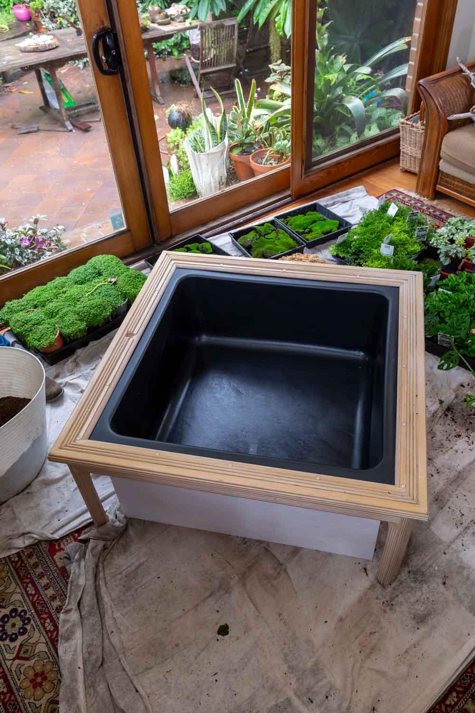 coffee table terrarium better homes