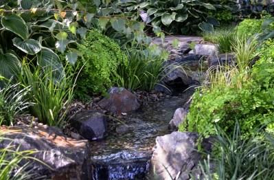 Calming waters - waterfall