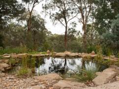 Blackburn billabong set in native garden