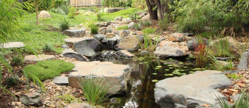 Garden pond in Japanese style garden