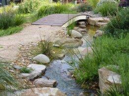 Garden stream in a native style garden.
