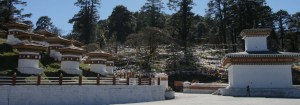 Bhutan Majestic Travel provides Best Knowledgeable Drivers and Vehicles