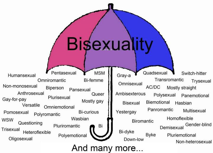 Image result for bisexual organizing