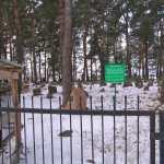 cmentarz tatarski w Studziance