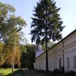Zamek Radziwiłłów w Białej Podlaskiej
