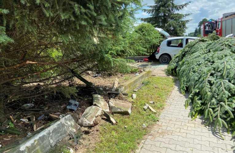 Clio uderzyło w ogrodzenie oraz w drzewo