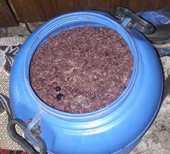 Kryminalni z Terespola zabezpieczyli niemal 100 litrów zacieru oraz gotowy już produkt