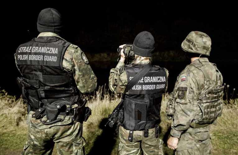 Współpraca WOT i SG na granicy