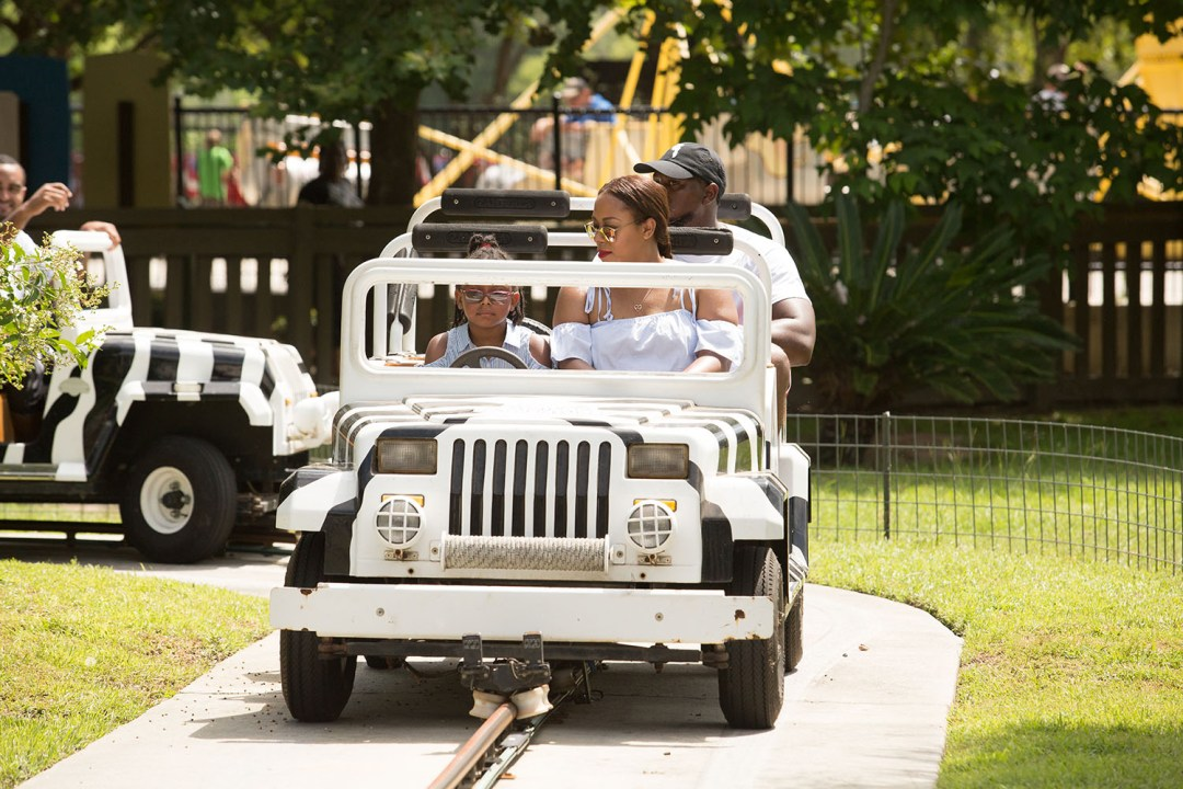 Safari Jeeps - Wild Adventures Travel Guide