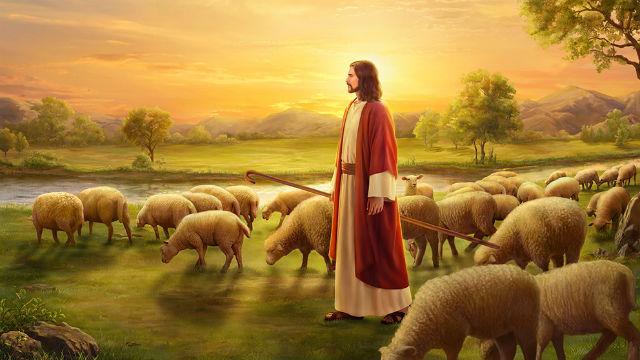 gesu,cristo,agnello,sole,luce