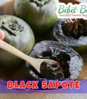 sawo black sapote