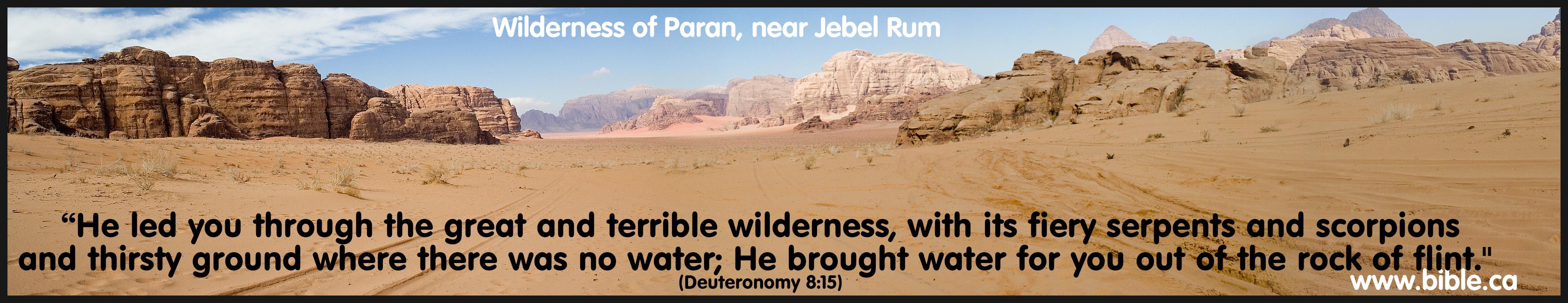 Image result for wilderness