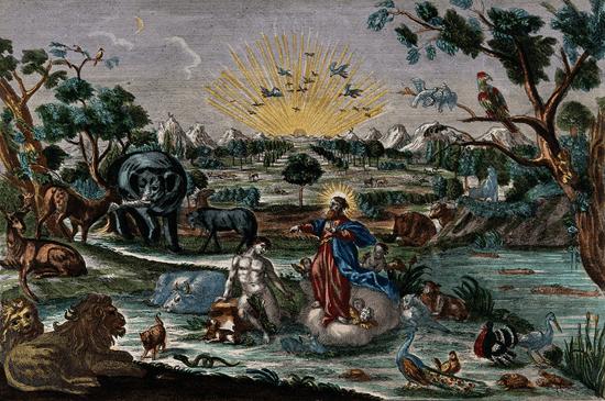 Garden of Eden - unknown artist
