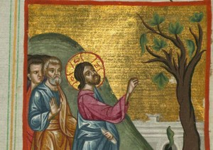 Jesus curses a fig tree - Artist Unknown