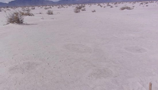 Odd dark spots were discovered to be hidden footprints