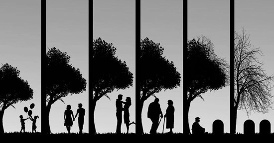 The stages of life and relationships - from birth to death