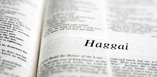 Detailed outline of the Book of Haggai