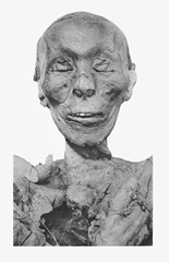 Mummified head of Pharaoh Thutmose III - a potential candidate for the Pharaoh mentioned in Exodus