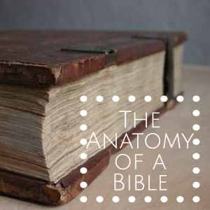 the anatomy of a bible