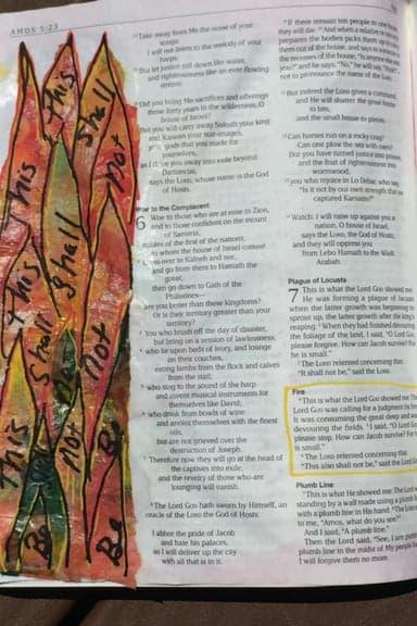 Amos 7.4-6