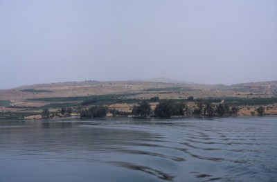 Picture of the shore of the Sea of Galilee