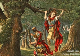 Although the biblical text says that Absalom caught his head in the tree, it is probably a reference to Absalom's hair.